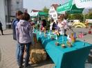 Frühlingsmarkt 2014_3